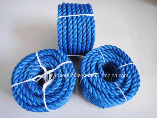 Supply Nylon Rope and Plastic Rope PE Rope