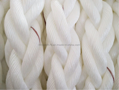 Natural PP Danline Rope 500m/Reel