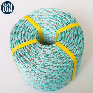 High Quality 3/4 Strand Polypropylene PP/PE Twist Danline Nylon Polyamide Used Ship Rope